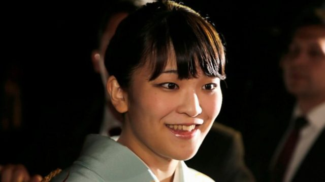紋 菊 ニュース ノ